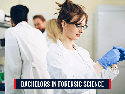 Bachelor in Forensics