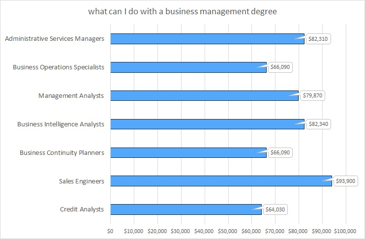 what can i do with a business management degree ?