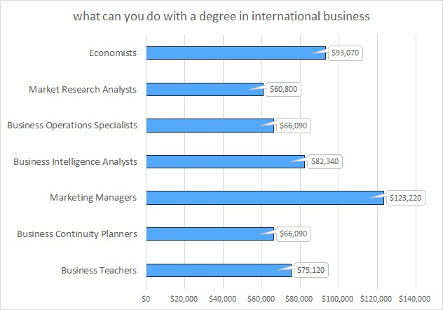 what can you do with a  degree in international business?